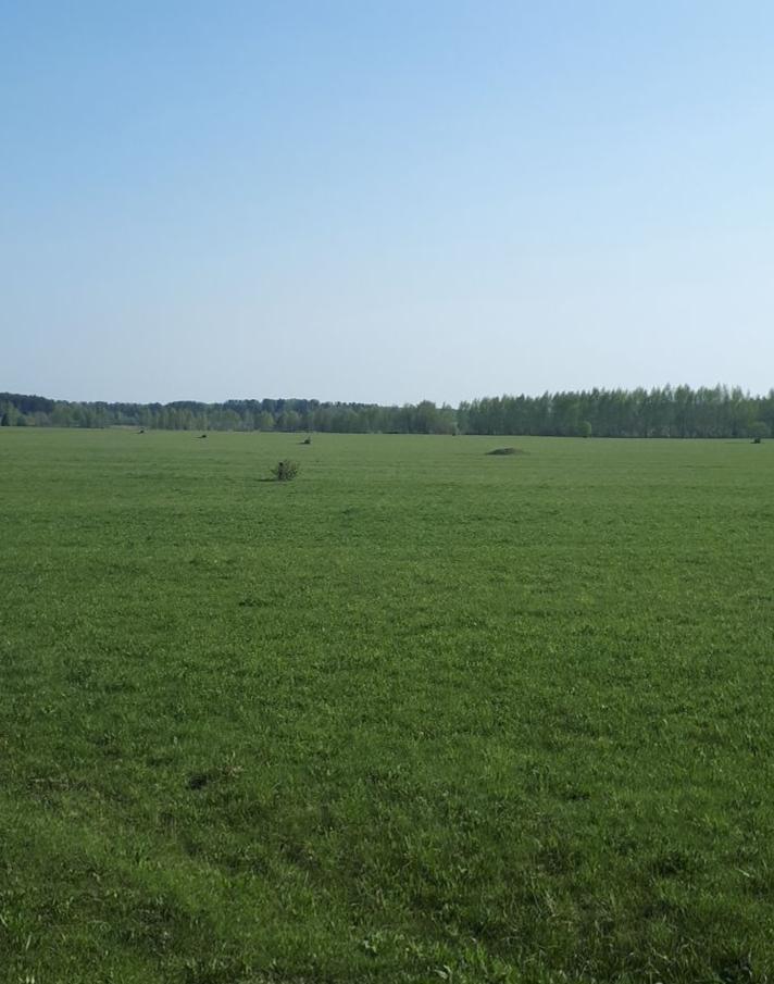 Участок на продажу по адресу Россия, Тверская обл, деревня Соколово