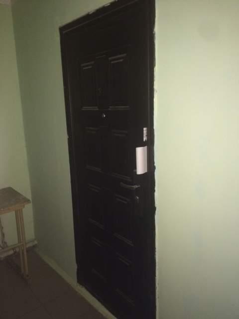 Продажа 1-к квартиры Ефремова улица, д.133