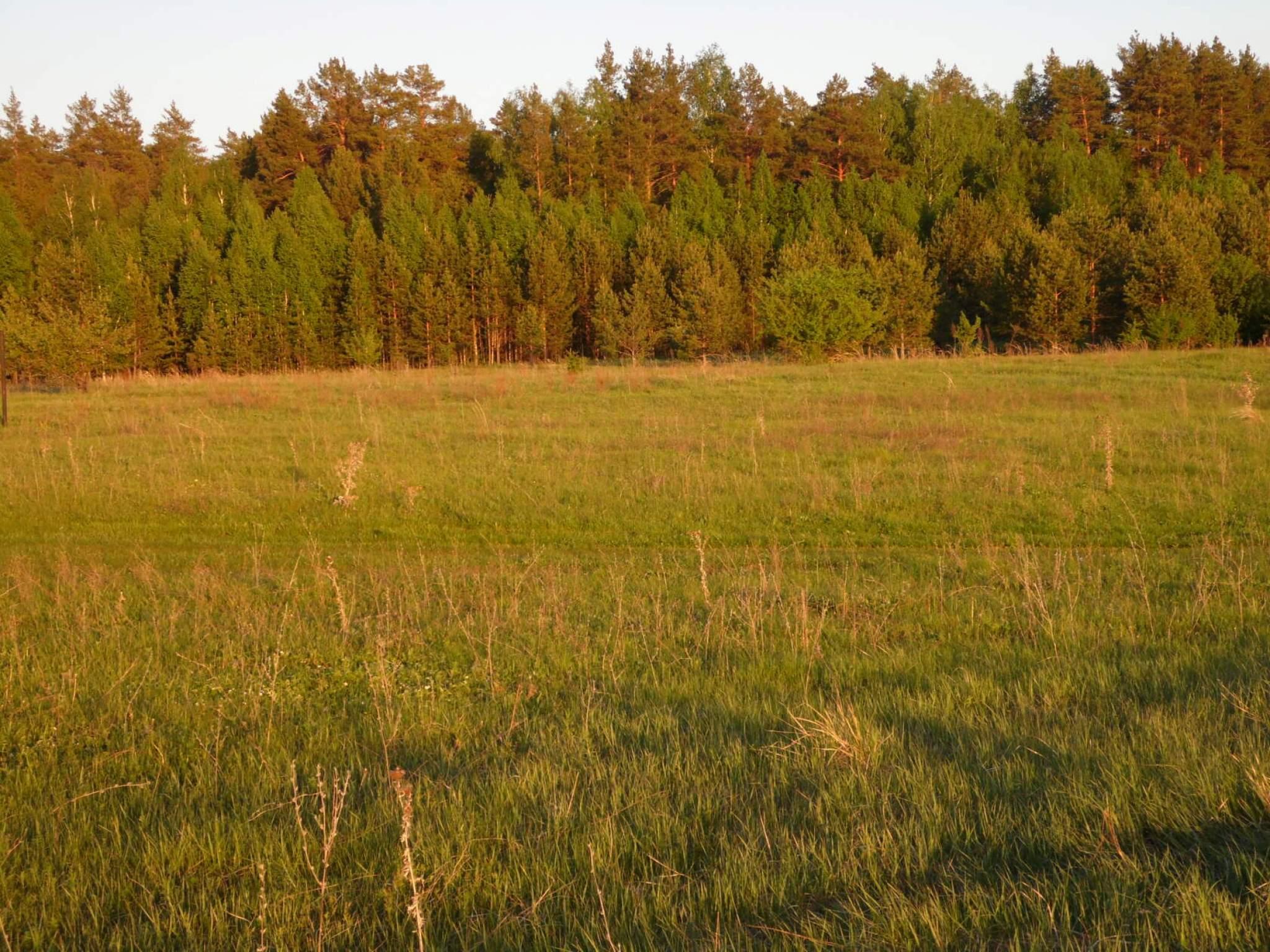 Продается земельный участок в селе