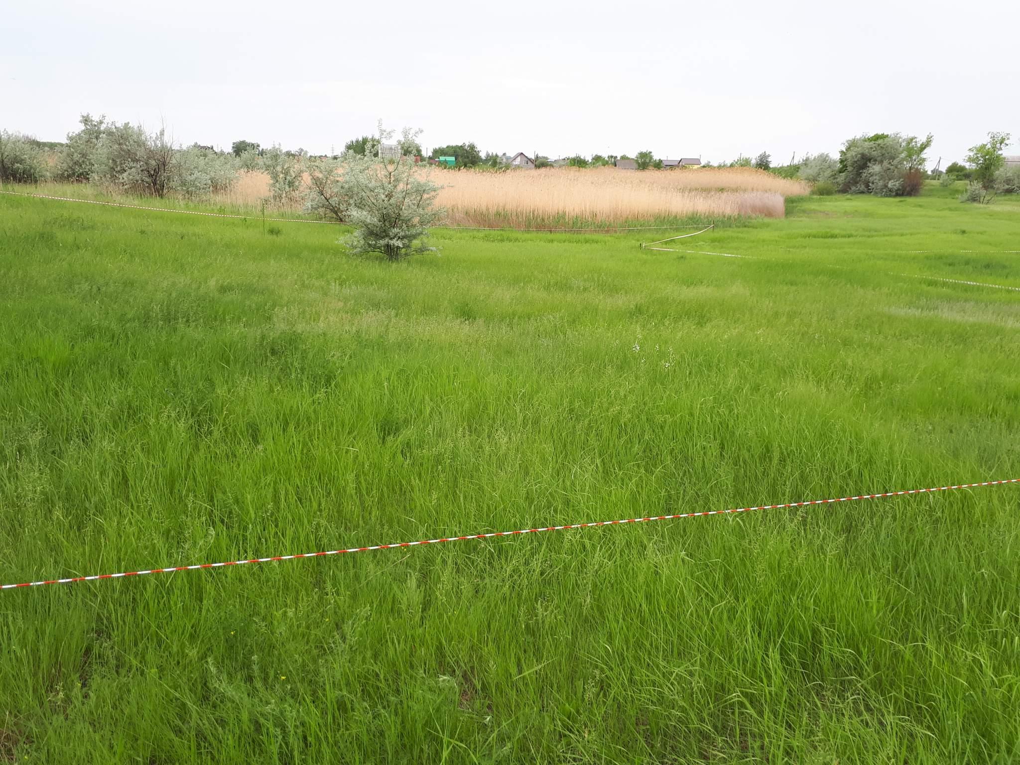 Продам: земельный участок общей
