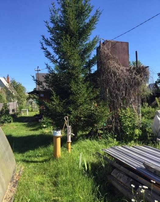 Продажа дома, 28м <sup>2</sup>, 10 сот., Тюмень, Зеленая улица